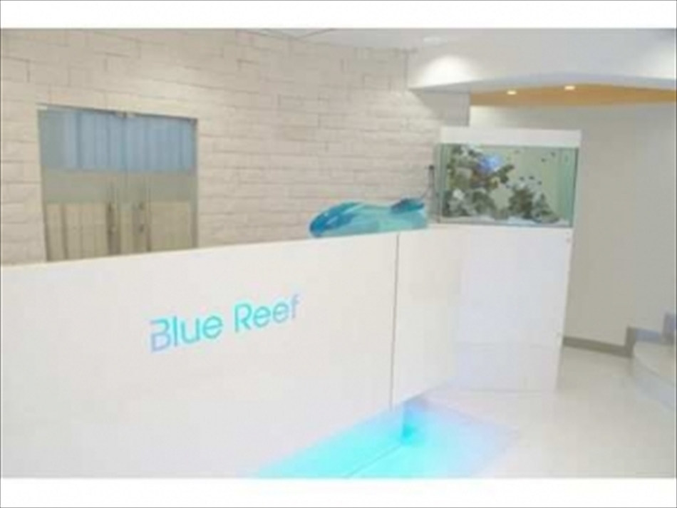 Blue Reef(ブルーリーフ) アイラッシュ